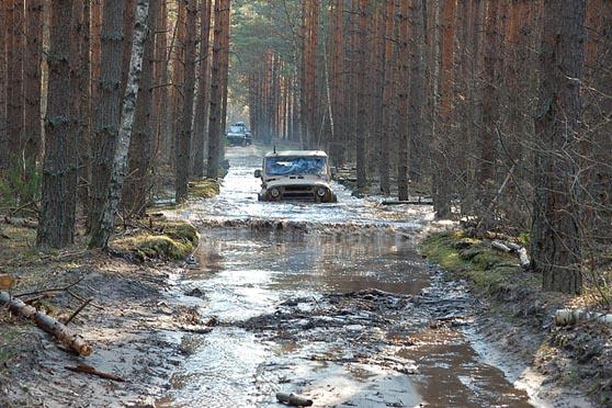 Индивидуальный трофи рейд по полям и лесам